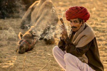 Paquetes De Viaje Del Rajasthan