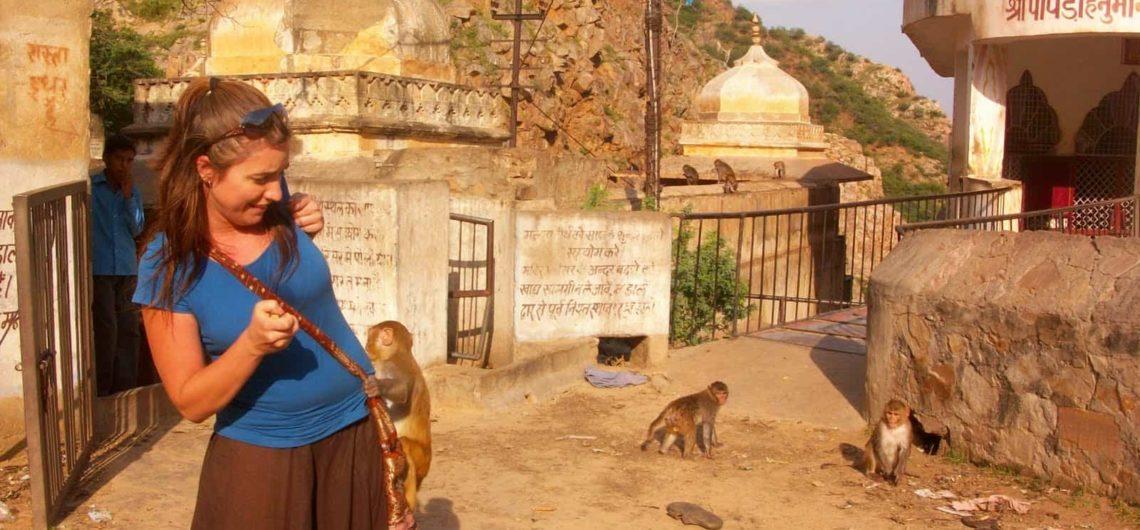Viajes a Jaipur Templo de Monos | Paquetes de viajes a India