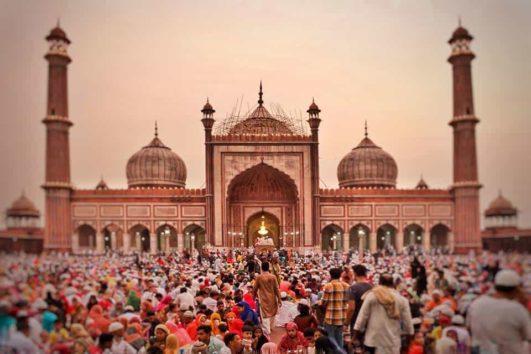 paquetes de viajes a india